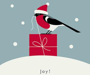 christmas, snow, and bird image