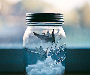 jar, bird, and clouds image