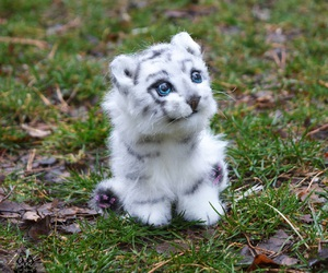 adorable, stuffed toy, and white tiger image