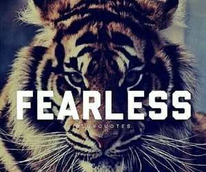 fearless, tiger, and quotes image