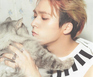 beast and dongwoon image