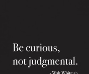 quotes, curious, and text image