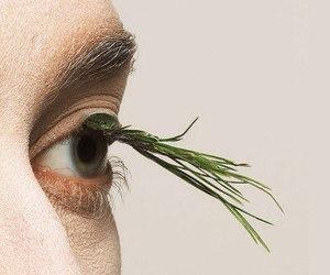eyelashes, eyes, and plants image