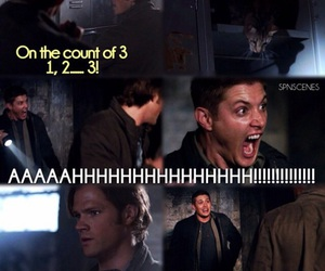 funny, supernatural, and brothers image