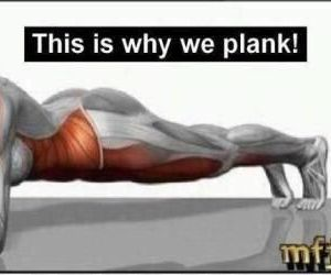 plank, fitness, and workout image