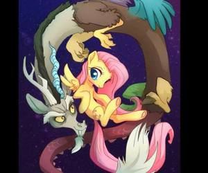 MLP, fluttershy, and fluttercord image