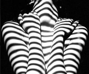body, lights, and shadows image