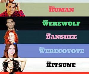 teen wolf, werewolf, and banshee image