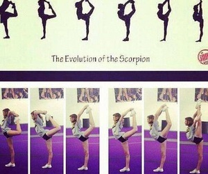 evolution and cheer image