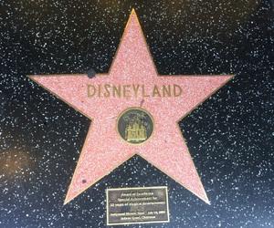 disneyland, hollywood, and la image