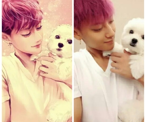 t.a.o and z.tao image