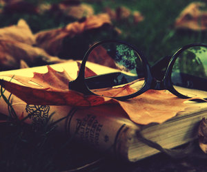 book, glasses, and autumn image