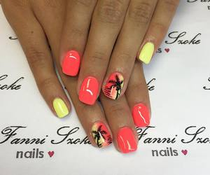 nail, palm tree, and love image