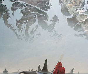 whale, nature, and orca image