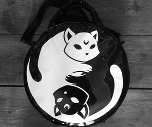 cat and yin yang image