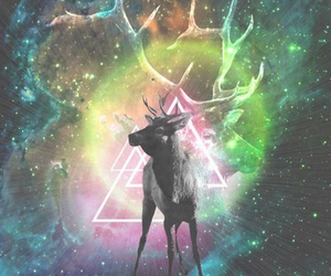 hipster, galaxy, and deer image