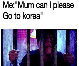 funny, korea, and life image