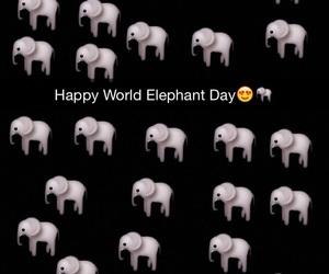 international and elephant day image