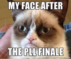pretty little liars, grumpy cat, and pll image