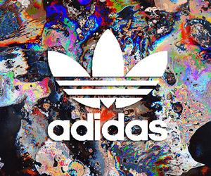 adidas, grunge, and guy image