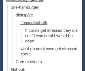 coral, funny, and puns image