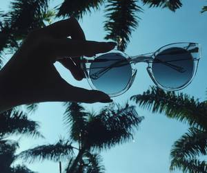 summer, sunglasses, and palm trees image