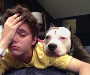 boy, dog, and pale image