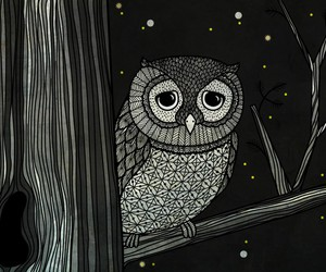 owl and art image