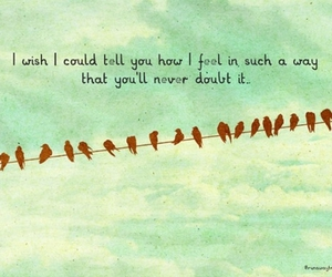 love, bird, and quote image
