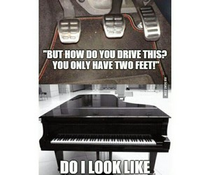 funny and piano image