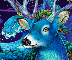 animal, beauty, and blue image