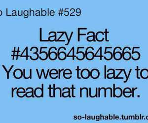 Lazy, funny, and lazy fact image