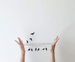 bird, art, and hands image