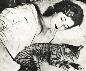 1950s, asleep, and pretty image