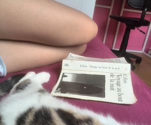 book, chill, and home image