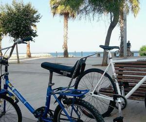 bikes, boyfriend, and fixed image