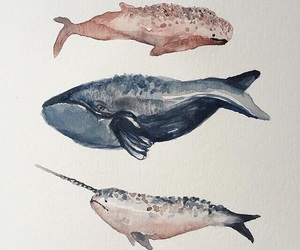 whale and art image