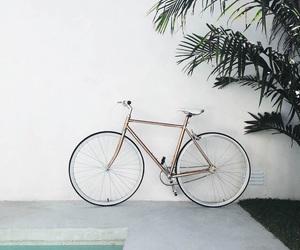 bike, art, and bicycle image