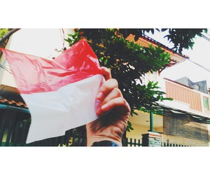 flag and indonesia image