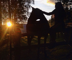equestrian, forever, and future image