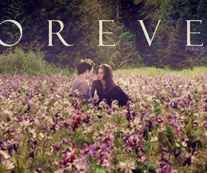 forever, twilight, and bella image