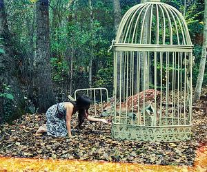 girl, animal, and cage image