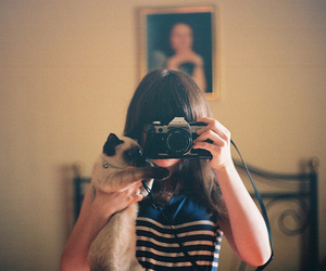 cat, girl, and camera image
