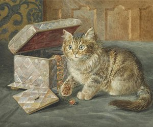 art, cat, and fluffy image