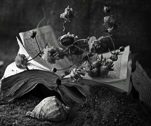 book, flowers, and roses image