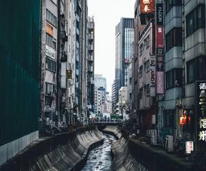japan, city, and shibuya image