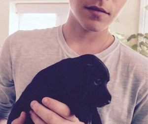 brooklyn beckham, dog, and beckham image