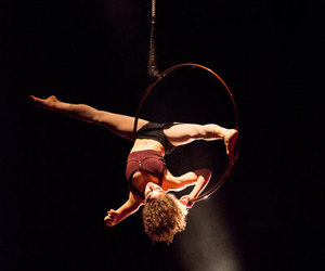 aerial hoop, choreography, and circus image