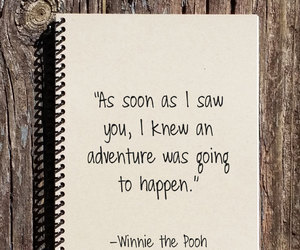 adventure, bear, and notebook image