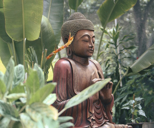 Buddha, meditation, and zen image